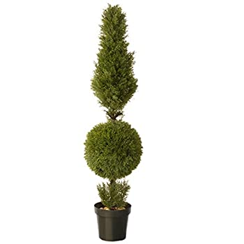 National Tree 60 Inch Juniper Cone and Ball Topiary Tree in Green Round Plastic Pot (LCYT4-700-60)