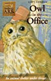 Animal Ark 9: Owl in the Office (0340619317) by LUCY DANIELS