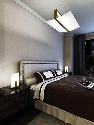 Lampadario a Sospensione VIRKE 50x40 cm Lampada 2 Luci Design Moderno Vetro Curvo Satinato Bianco e Legno Foglia Oro