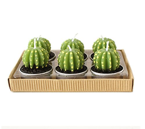 Cute Oval Cactus Shaped Smoke And Smell Free Candle front-560776