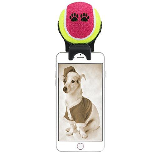 smartphone attachment selfie stick for pet purple sporting goods racquet sp. Black Bedroom Furniture Sets. Home Design Ideas