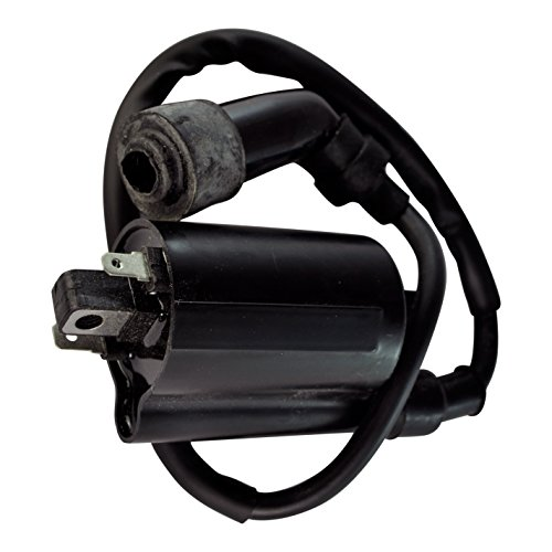 External Ignition Coil W/ Cap For Yamaha Grizzly Raptor 700 600 250 V Star XV 360 Virago Honda TRX400 XR 400 R 1988-2014 OEM Repl.# 2UJ-82310-00-00 3SX-82310-00-00 2UJ-82310-01-00 2UJ-82320-00-00 (400 Ex Ignition Coil compare prices)