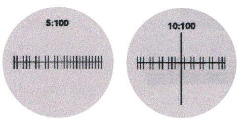 Wf15X Eyepiece With 1/10 Mm Reticle