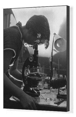 Canvas Print Of Rosalind Franklin From Mary Evans