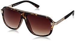 Scavin  Aviator Sunglasses (Brown) (215S911DEMI|58)
