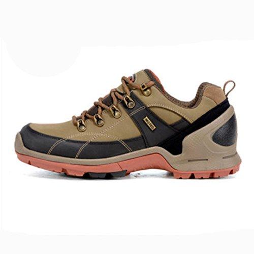MENGYZ Autunno e inverno outdoor uomo basso taglio scarpe da trekking scarpa sport alpinismo . khaki . 42