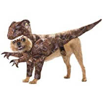 Animal Planet PET20109 Raptor Dog Costume