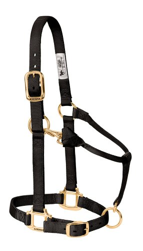 Weaver Leather Original Adjustable Chin and Throat Snap Halter, Black, Average Horse Size