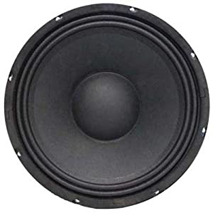 Seismic Audio Jolt-10Pair Bass Guitar Raw Woofers Speaker Driver Pro Audio Replacements, 10-Inch from Seismic Audio Speakers, Inc.