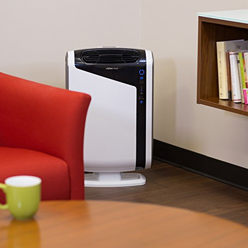 Aeramax 300 Air Purifier With Large Room Allergy And
