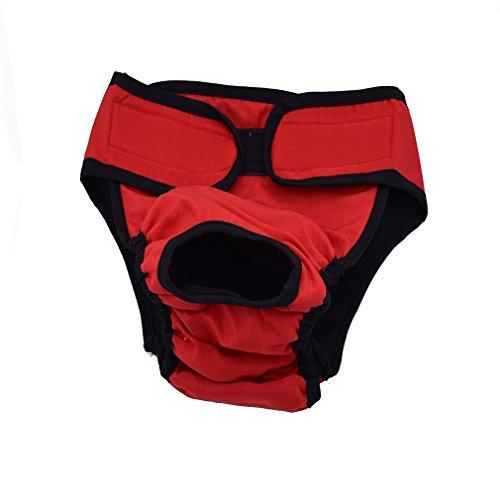 Artikelbild: Generische Hundeschutzhose für Hündinnen, hundewindeln Inkontinenz Rüden, Umfang 43-60cm einstellbar, Rot