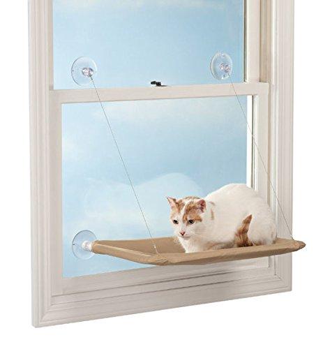 2pc ez cat window mounted perch the pets best blog