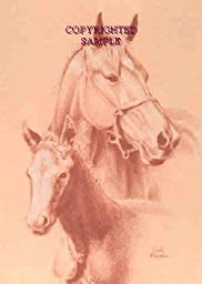 Mare with Foal - Drawing by Cindy Farmer