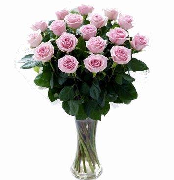 ramo-de-12-rosas-naturales-frescas-en-color-rosa-flores-a-domicilio
