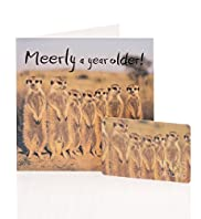 Meerkat Gift Card