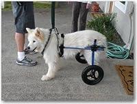 世界中でうちの子だけの1台「K-9 カスタム」 後肢サポート車いす 体重18.1〜27kg用