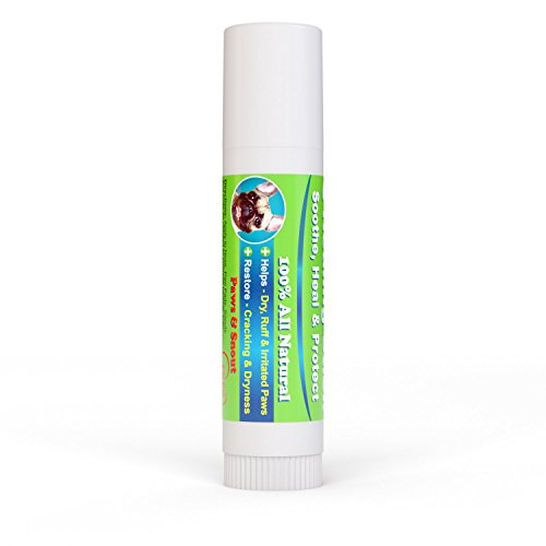 Dog-Healing-Balm-for-Paws-and-Snout-All-Natural-Aloe-Vera-Tea-Tree-Oil-Cocoa-Butter-and-Coconut-Oil-5-oz-Stick
