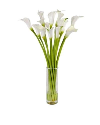 New Growth Designs Calla Lily Arrangement in 13 Cylinder Vase