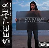 Seether - Disclaimer