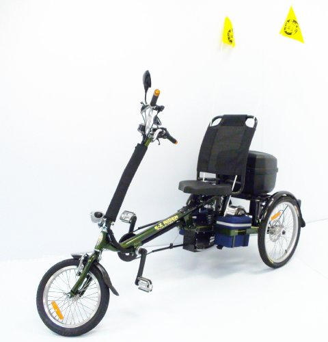International Surrey Company EZ Rider Electric Tricycle (Green)