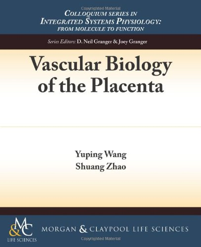Vascular Biology of the Placenta