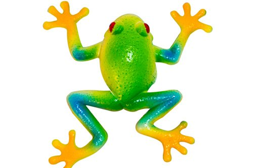 Stretchee Frog the Rain Forest Stretchable Frog - 1