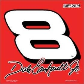 Dale Earnhardt Jr. #8 NASCAR Car Flag by Hall of Fame Memorabilia