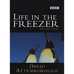 Life In The Freezer [DVD] [1993]