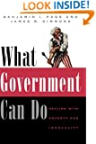 What Government Can Do: Dealing With Poverty and Inequality (American Politics and Political Economy)