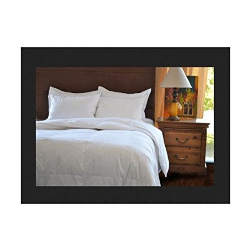 natural comfort classic white goose down feather comforter queen new free sh ebay. Black Bedroom Furniture Sets. Home Design Ideas