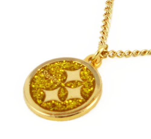 Pittsburgh Steelers Glitter Necklace NFL Team Logo Charm Pendant Gift at Steeler Mania