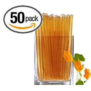 Floral Honeystix - Pumpkin Blossom - 100% Honey - Pack of 50 Stix - 250g