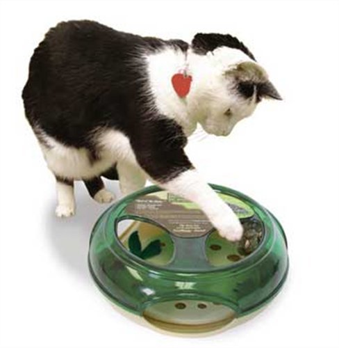 our-pets-specialty-maus-chaser-thrill-der-chase-katze-spielzeug