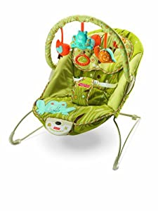 Fisher-Price Green Meadows Bouncer (Discontinued by Manufacturer)