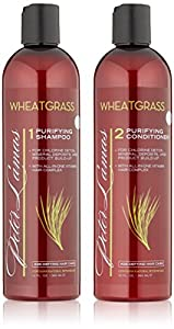 Peter Lamas Purifying Shampoo & Conditioner with Wheatgrass - Wheat Grass Hair Care - Each Bottle 12 Fl Oz