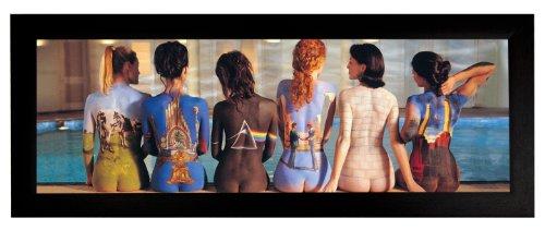 Pink Floyd (Back Art) 12x36 Framed Poster (E3-1024A)