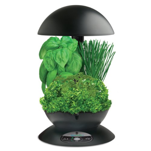 Indoor Garden with Gourmet Herb Seed Kit