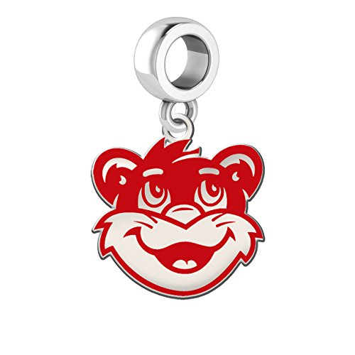 Cincinnati Bearcats Silver and School Color Dangle Charm