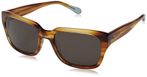 triwa-mens-lector-wayfarer-sunglasses-horn-transparent-blue-temple-tips-55-mm