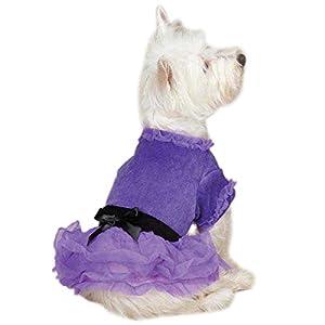 Zack & Zoey UM3950 06 79 Vibrant Party Dress Teacup for Dogs, Ultra Violet