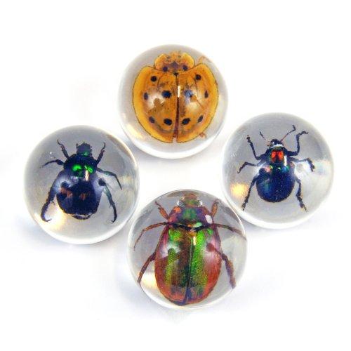 Beetle Marbles 4pcs Set