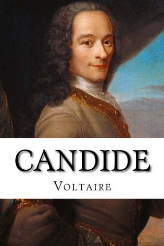 voltaire candide essay questions