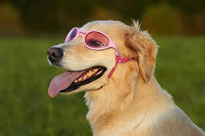Doggles K9 Optix Shiny Pink Rubber Frame with Pink Lens Sunglasses, Large