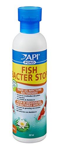 API-Hygine-et-Sant-des-Poissons-pour-Aquariophilie-Fish-Bacter-Stop-237-ml