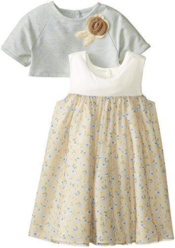 Pippa & Julie Little Girls' Knit And Mesh Popover Top Dress, Multi, 3T