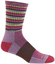 Darn Tough Vermont Merino Wool Micro Crew Cushion Sock (Plum Stripe, Large)