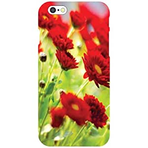 Printland Red Rose Phone Cover For Apple iPhone 6