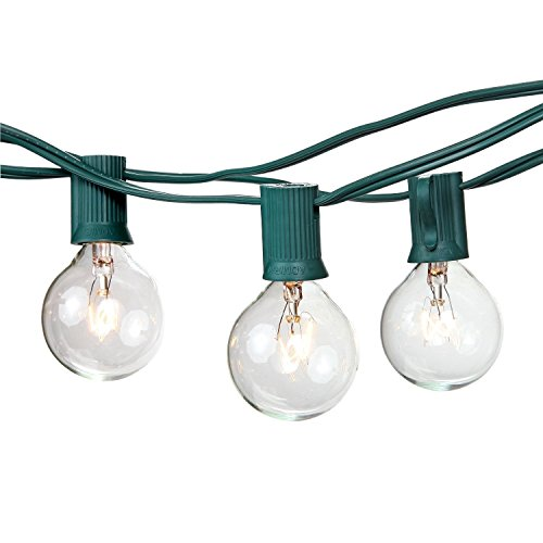 Brightech - Ambience - Outdoor String Lights with 25 G40 Clear Globe Bulbs - Commercial Quality - UL