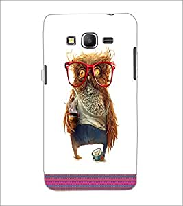 PrintDhaba Owl D-3316 Back Case Cover for SAMSUNG GALAXY GRAND PRIME (Multi-Coloured)