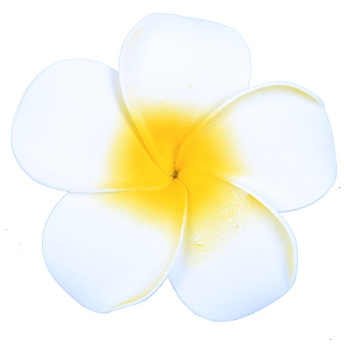 Anleolife Large White Hawaiian Hair Flowers/Florida Beach Plumeria Wedding Flowers Fabulous Foam Hawaii Frangipani Flower Hairclip Bridal Hair Clip 6pcs/lot (big white)